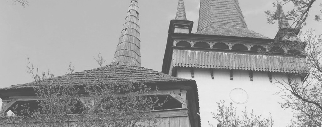 Traditional Wooden Constructions of Europe